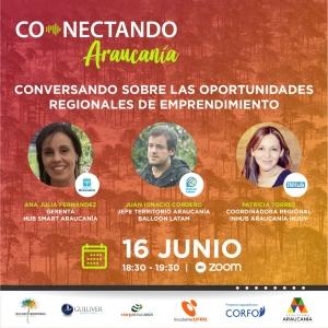 Conectando Araucania