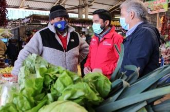 Precios Feria Pinto seremi agricultura