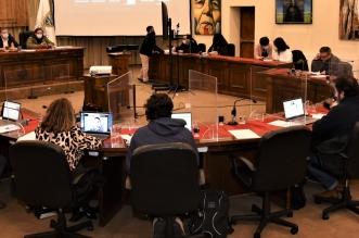concejo municipal temuco participacion ciudadana